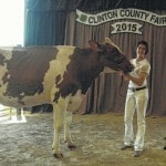 Dairy Showman winners