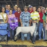 Grand champion lamb brings $3,200