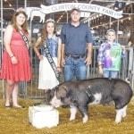 Geer has two grand champ breeding gilts