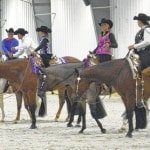 Horses of a different color for a good cause