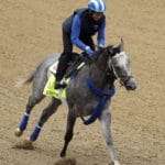 DERBY 2016: A touch of gray gives 142nd Derby striking look