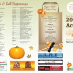 2017 Fall Activities
