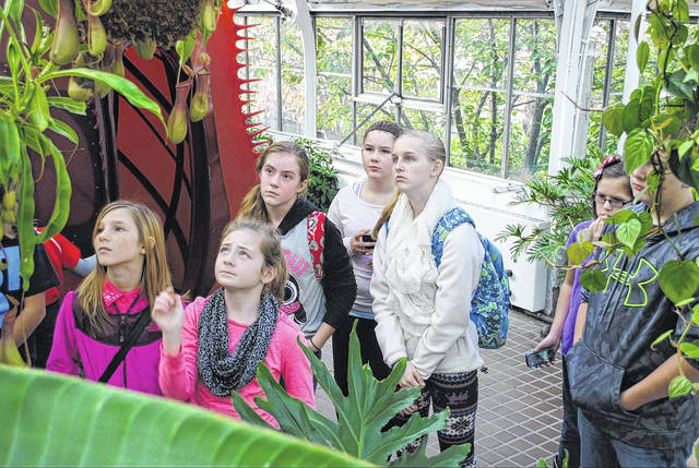 """The Wilmington Schools Foundation provides """"creative and innovative opportunities that enhance the educational programs that are outside the school's budget"""", including field trips for students that are both educational and enjoyable."""
