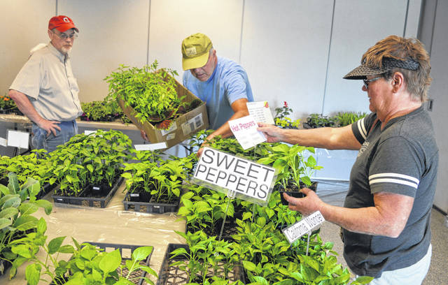 Rick and Linda Stanforth, center and right, are eager customers at the Clinton County Master Gardeners plant sale Saturday at OSU Extension in Wilmington. Looking on is Tony Nye, left, the local OSU Extension educator for agriculture and natural resources.