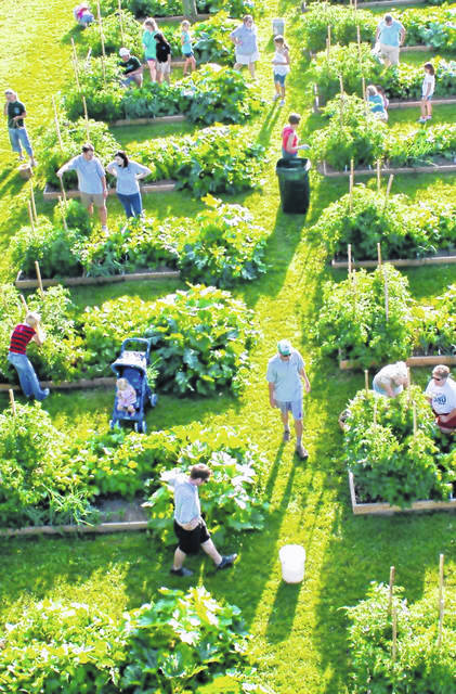 A bird's-eye view features local persons working garden plots with assistance by master gardeners in summer 2009, the inaugural year of WC's Grow Food, Grow Hope Community Gardens, an initiative developed in response to the DHL pullout and national economic downturn.