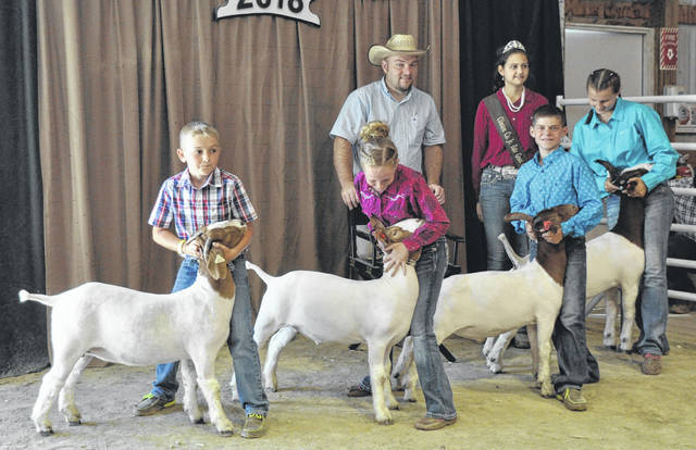 In Market Goat Showmanship, winners are, from left, Beginner Market Goat Showman Kaiden Smith, Junior Market Goat Showman Landree Stump, Intermediate Market Goat Showman Jaden Snyder, and Senior Market Goat Showman Shelby Williams.