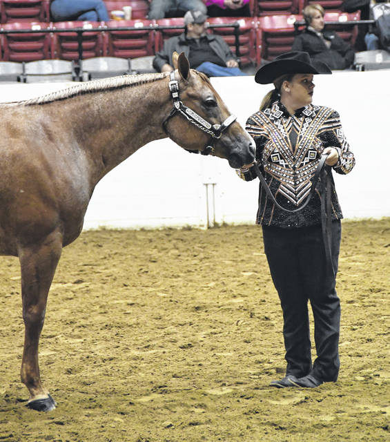 Alexis Winemiller placed 5th in Youth Halter Performance Mares.