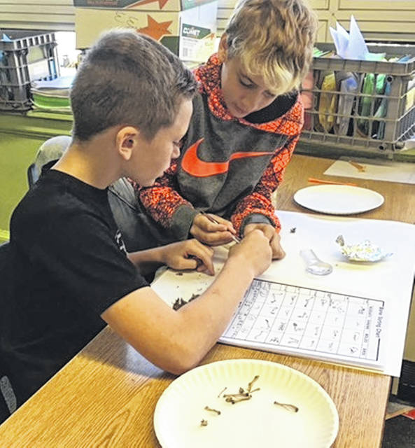 """The fifth-graders at East End Elementary have the Wilmington Schools Foundation to thank for being able to participate in a lab dissecting owl pellets. The students first learned about ecosystems, food webs, food chains and how we are all a part of making the ecosystem work. After learning about the roles of primary consumers and secondary consumers, students were able to understand the importance of owls in our ecosystem. In dissecting the owl pellets, the students could see the prey that the owls fed on because after they dissected the pellets, they reconstructed the bones so that they could identify the organisms. One student said that, """"this lab was the best lab of the whole year so far."""" We thank you Wilmington Foundation for supporting our learning."""