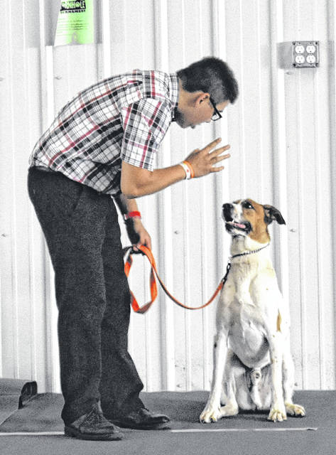 Mitchell Lennon tells his dog Bo to wait during the Dog Obedience, Showmanship & Skillathon at the Peterson Building on Thursday at the Clinton County Fair.