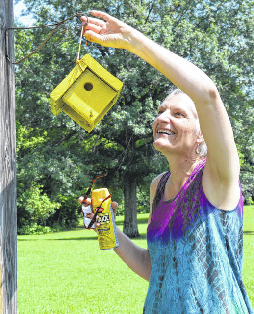 At the Quaker Knoll Campground & Retreat Center in Clinton County's Vernon Township, Sue Motz hangs a freshly painted bird house that she made as an activity during sessions of Wilmington Yearly Meeting of the Religious Society of Friends. Motz attends Eastern Hills Friends Meeting which is in Cincinnati and is an affiliate of Wilmington Yearly Meeting. Wilmington Friends Meeting's Doug Woodmansee facilitated the bird house construction activity.