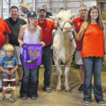 Grand Champion cow collects $1,700