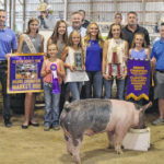 $6,375 bid on Grand Champion hog