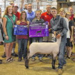 Grand Champion lamb sells for $1,625