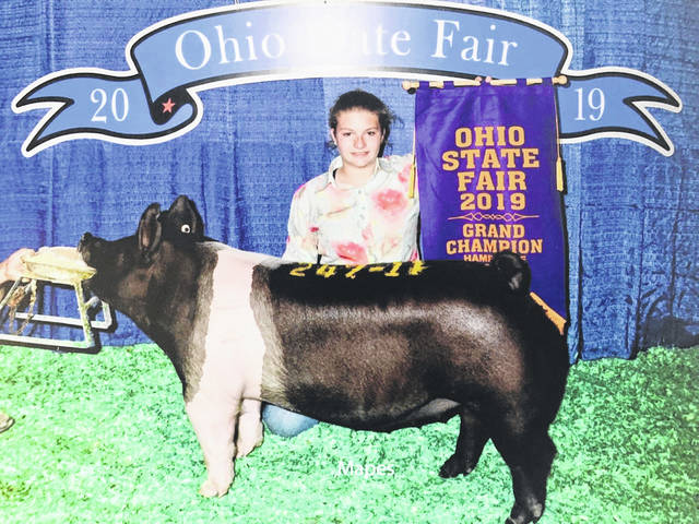 "Haley Schneder exhibited the Grand Champion Hamshire Gilt at the 2019 Ohio State Fair. Haley's brother, Jay, bred and raised the gilt and Haley exhibited. Ohio State Fair judge Kent Bennington described the show as ""extremely good and extremely deep"". The brother-sister duo spent many hours raising this litter after the sow turned mean and the family raised them by hand-feeding the piglets Haley is a member of the Blue Ribbon Kids 4-H group and is an eighth-grader at Wilmington Middle School. Jay is a junior at Wilmington College majoring in Animal Science. The siblings plan to use this prize-winning gilt to further their swine breeding operation."