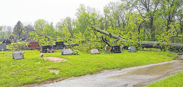 This tree toppled over and caused damage at the cemetery.