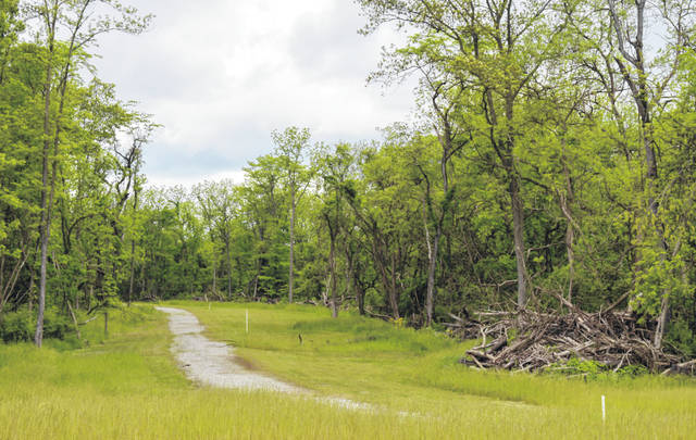 A gravel path wends its way through woods, which stand behind David R. Williams Memorial Park in Wilmington. The trail runs from behind the city park to a new pond, pictured above.