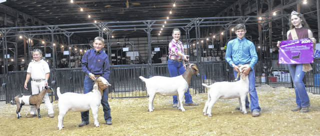 Breeding Goat Showmanship winners, from left: Beginner, Mackenzie Strong; Junior, Kaiden Smith; Intermediate, Nikki White; Senior& Breeding Goat Showman of Showman, Jaden Snyder.
