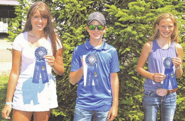 Standouts in the Clinton County Junior Fair include, from left, Delaney Miller who earned first in the Photography Master category; Logan Miller who earned first place in the Focus on Photography category; and Janelle Capehart who earned first in the Controlling the Image category.