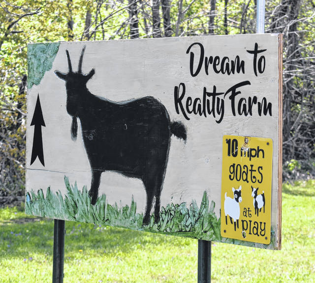 Welcome to Dream to Reality Farm.