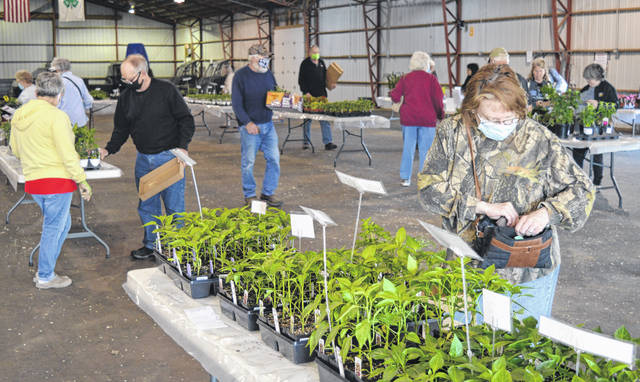 The Sheep Barn at the Clinton County Fairgrounds was occupied Saturday by Clinton County Master Gardeners, customers with green thumbs, and plant life for an annual plants sale.