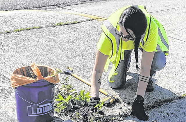 Annen Vance tackles weeds along downtown streets and sidewalks. For more photos, visit wnewsj.com.