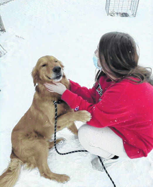A Wilmington College volunteer plays with one of the many good dogs at PAWS.