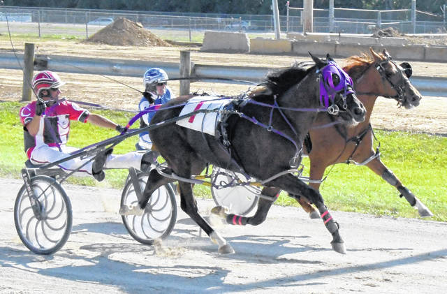 There is expected to be the most entries in decades for harness racing at the Clinton County Fair this year. Harness racing will be 5 p.m. Monday and Tuesday at the Fairground.