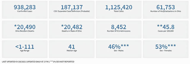 The COVID-19 dashboard for the State of Ohio as of July 28.