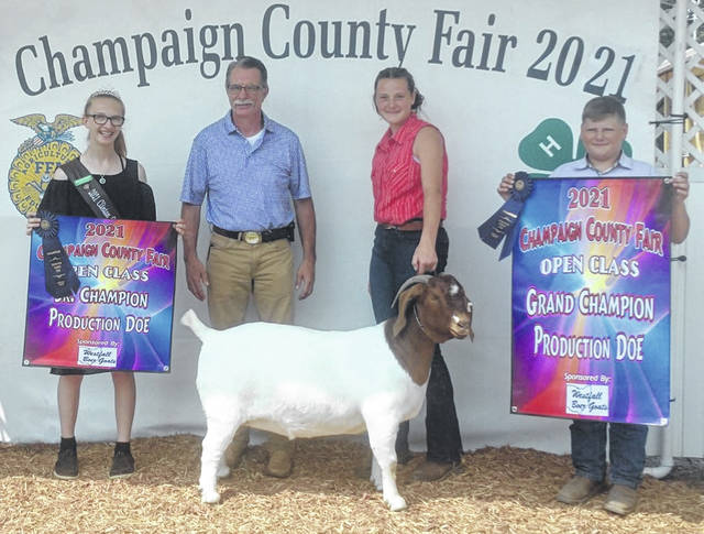 """Nikita White from Clinton County with her doe, """"Diamond In The Rough"""", at the Champaign County Fair won 1st place 24-36 month Production Doe, Grand Champion Senior Production Doe, and Grand Champion Overall Production Doe. From left are: Mikala Hatfield, Clinton County FCS Queen; Jim Wilson, Judge; Nikita White, showman and owner of the doe; and Cory Kidd, fellow showman and friend."""