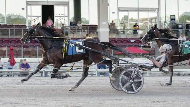 Lou's Pearlman comes into the Jug off a win in the Keystone Classic on Sept. 17 at The Meadows.