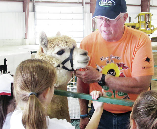 Bill Verhelst of Sunny Meade Alpacas in Swanton holds Boomerang the Alpaca steady while his wife, Julie, discusses the animal and how its fur is used.