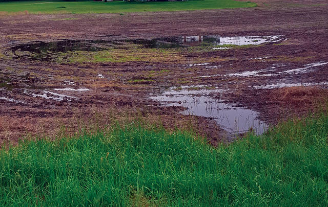 Continued rain and wet fields have made planting difficult for area farmers.