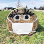 Area 4-H member decorates hay bale