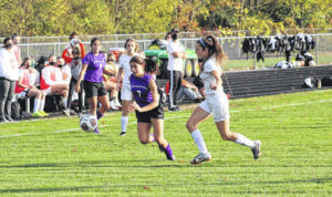 Dogs blank Otsego in sectional action