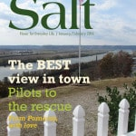 Salt Southeast January/February 2016