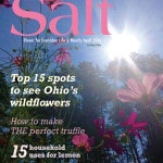 Salt Southeast March/April 2016