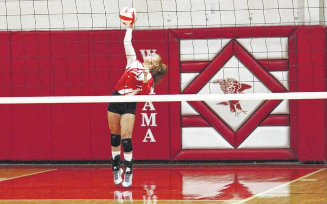 Wahama's MaKinley Bumgarner serves the ball during the White Falcons' Tri-Valley Conference Hocking Division volleyball match against Southern on Monday night in Mason, W.Va.