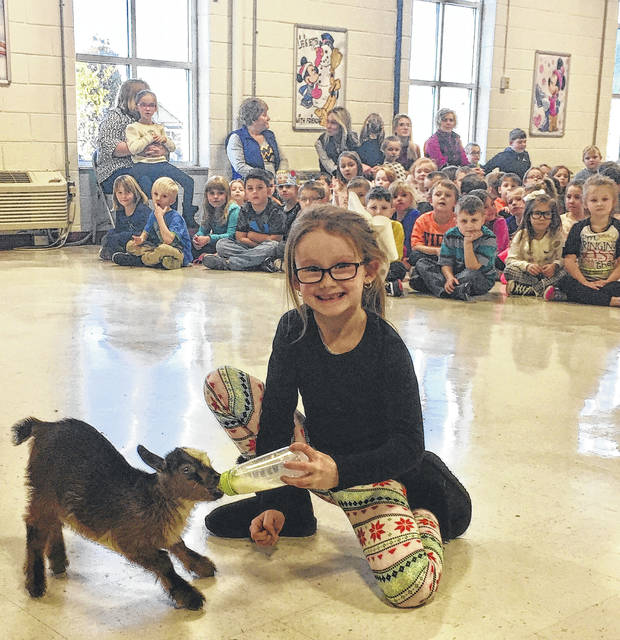 Lola Tolliver, a first grade student from Lori Doeffinger's class, feeding a baby goat. Tolliver currently has the most Accelerated Reader points at 113.