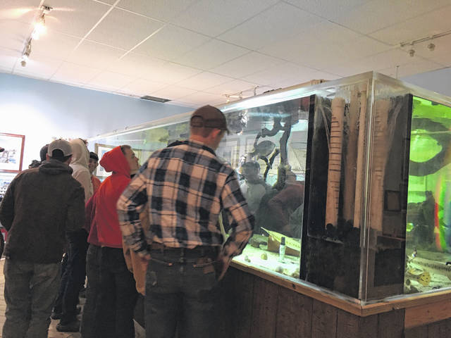 Several visitors of the Point Pleasant River Museum delighted in seeing the various river fish.