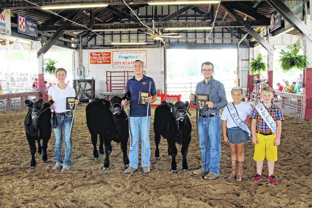 Senior Feeder Calf: first place, Jarred Hitt; second place, Adam Wilson; third place, Leah Hoffman.