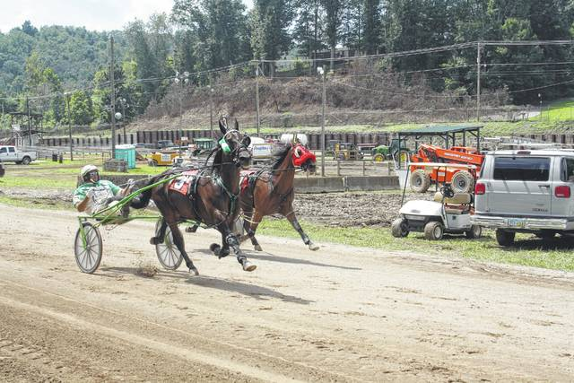 Harness racing will be held on both Thursday and Friday afternoons.