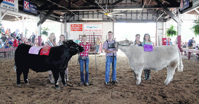 Market Steer Grand Champion winner Colton Arrington and Reserve Champion Kate Henderson.