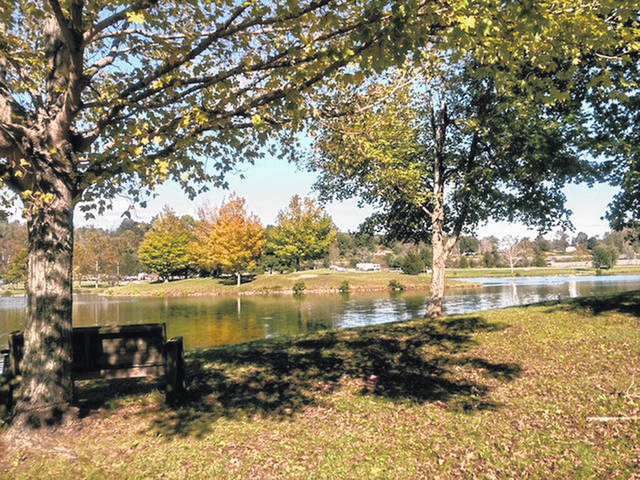 Krodel Park, pictured here, is full of fall colors at the moment. The City of Point Pleasant is planning LED lighting upgrades to its newly revamped walking trail with help from the Claflin Foundation.