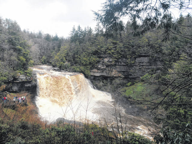 West Virginia is one of the 50 state park systems participating in America's State Parks First Day Hikes initiative. State parks participating in First Day Hikes include Cacapon Resort, Chief Logan, Pipestem Resort, Tygart Lake, Watoga, Kanawha State Forest and here, at Blackwater Falls.