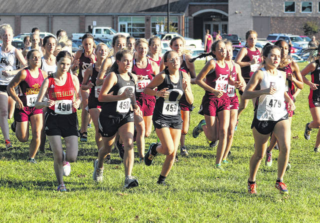 River Valley sophomore Lauren Twyman, right, leads the pack in the opening moments of the varsity girls race held Wednesday at the 2019 Skyline Lanes Invitational held in Bidwell, Ohio. South Gallia junior Aline Malyshevska, left, is also pictured.