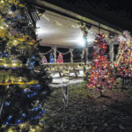 'Trees in the Park' returns to Mason