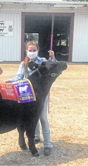 Ava Roach is pictured with her grand champion replacement heifer. She also won Rookie of the Year. The show was live streamed by Point Pleasant Live on Facebook. (Point Pleasant Live | Courtesy)