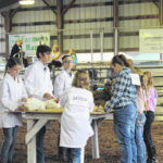 Meigs Fair Board releases revised schedule, rules