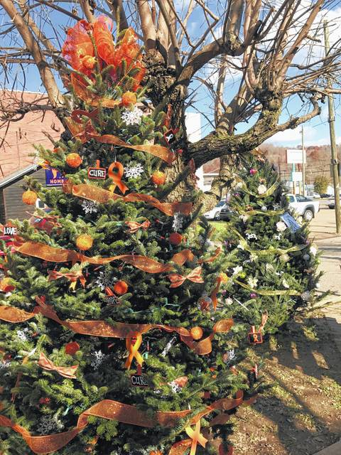 """Pictured are trees from a previous """"Light of Christmas"""" display in Gunn Park. (OVP File Photo)"""