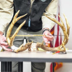 Bucking the record… Trophy buck surpasses state record